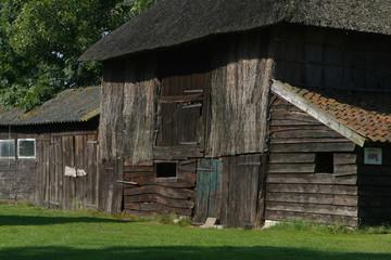 Ansen Ruinen. Country life. Drenthe Netherlands