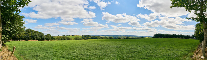 Green meadow as a panorama background with sky