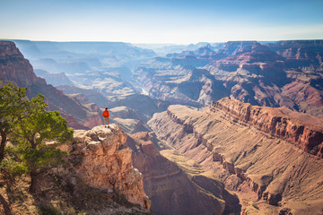 Wall Mural - Hiker in Grand Canyon National Park, Arizona, USA