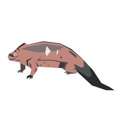lizard flat illustration