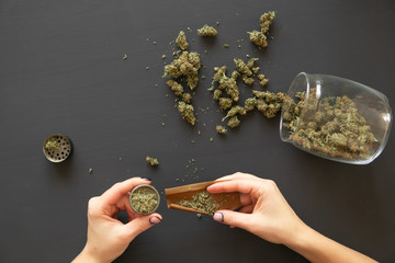Close up of marijuana blunt with grinder. Woman rolling a marijuana joint. Pot use concept. Top view. Woman preparing and rolling marijuana cannabis joint.