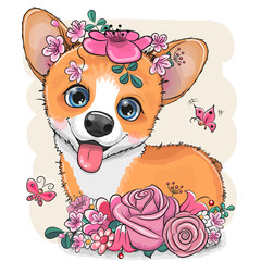 Cartoon Corgi with flowerson a white background