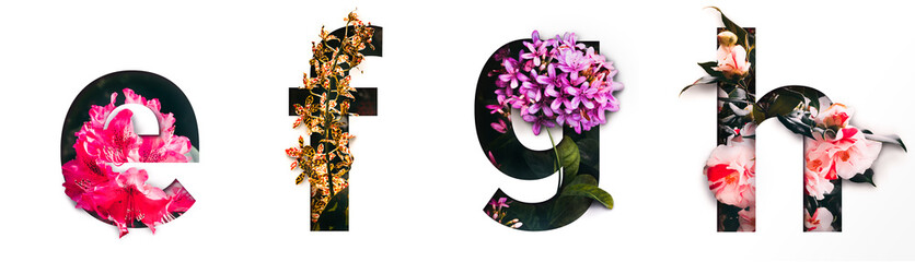 Flower font letter e, f, g, h Create with real alive flowers and Precious paper cut shape of alphabet. Collection of brilliant bloom flora font for your unique text, typography with many concept ideas Wall mural