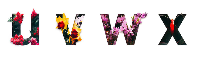 Flower font letter u, v, w, x Create with real alive flowers and Precious paper cut shape of alphabet. Collection of brilliant bloom flora font for your unique text, typography with many concept ideas