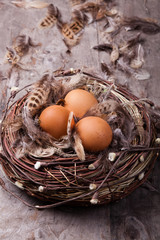 Easter rustic background: chicken eggs in the nest on wood