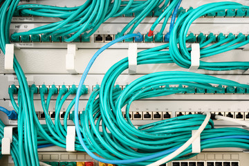 turquoise cables and ethernet switches connected in a network server