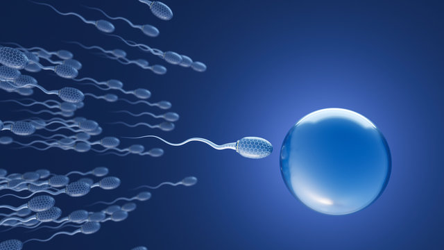 Futuristic sperms on the way to egg cell, d rendering
