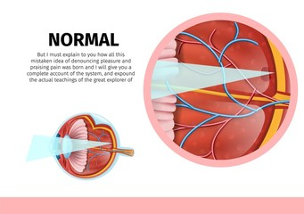 Normal Human Eye Anatomy Banner with Copy Space.