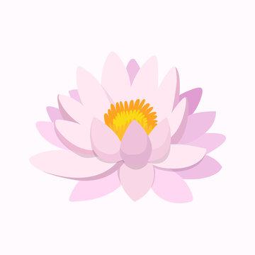 Lotus flower. Pink lotus. Flower. Vector illustration. EPS 10.