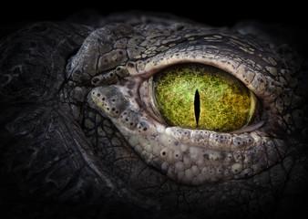 Scary eye of a crocodile. Green eye close up. Wall mural