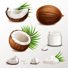 Coconut Realistic Set