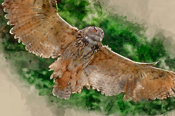 Affisch - Watercolour painting of Stunning European eagle owl in flight