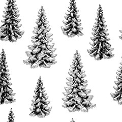 Fir tree spruce graphic black white seamless pattern background sketch illustration vector