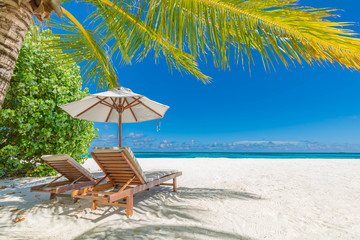 Perfect tranquil beach scene, soft sunlight and white sand and blue endless sea as tropical...