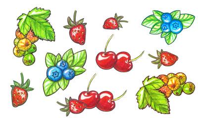 Set of watercolor berries.