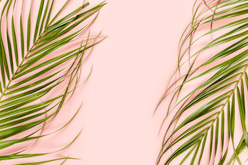 Wall Mural - Tropical palm leaves on pink background. Flat lay, top view minimal concept.