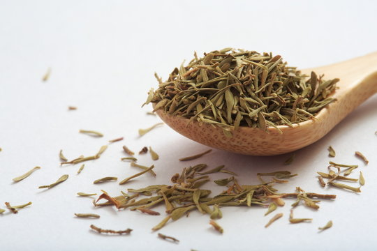 Thyme image (herb)