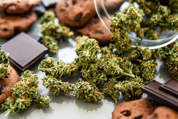 Cookies with cannabis and buds of marijuana on the table. Cookies with cannabis herb CBD. Treatment of medical marijuana for use in food, white background.