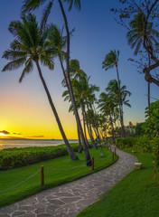 Wall Mural - boardwalk in Hawaii during sunset