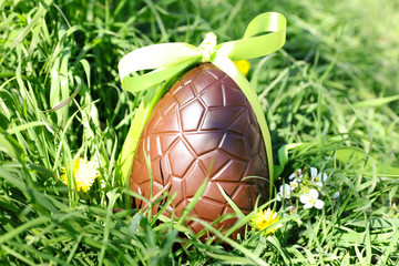 green grass and chocolate egg- easter
