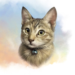 Cute kitty on watercolor background. Realistic portrait of a cat with big eyes. Drawing of a pet. Animal art collection. Good for print T shirt, pillow, banner. Hand painted pets illustration.
