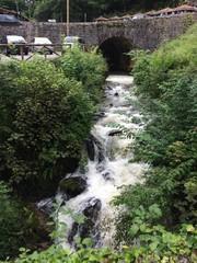 Cascada de río en medio de la naturaleza
