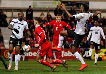 International Friendly - Wales v Trinidad and Tobago