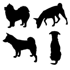 Set of black silhouettes. Different breeds of dogs 2