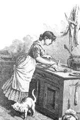 Cook the chickens with the waiting cat - Vintage Engraved Illustration, 1894