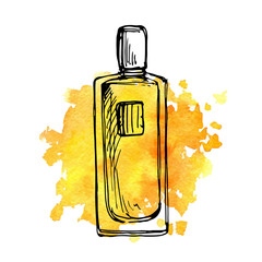 vector drawing perfume bottle