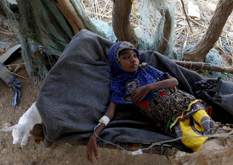 The Wider Image: Hunger stalks Yemen's remote villages after four years of war