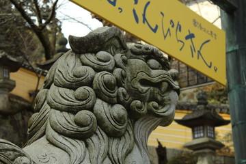 金毘羅さんの狛犬