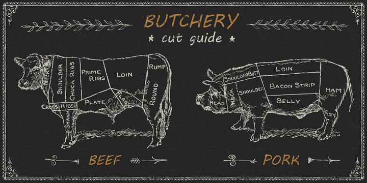 Butchers meat cuts chart engraved diagram
