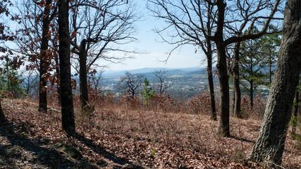 Mountain view, eastern Oklahoma in springtime