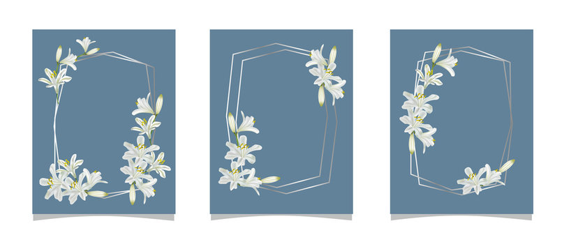 Set of card with agapanthus flower and abstract background-vector