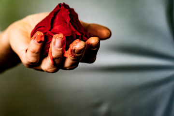 Woman's Hand With Rose