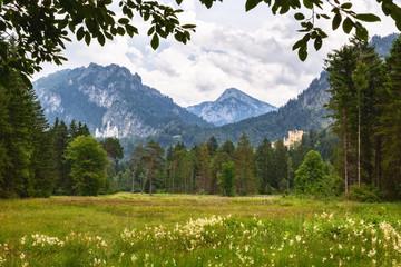 Palace Neuschwanstein and Hohenschwangau