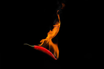 Fotobehang Hot chili peppers Red chilli with flame, black background, the concept of spicy - pictures