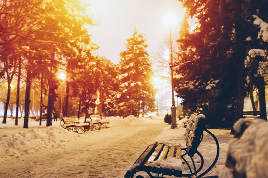 Beautiful snowy evening in the park. Amazing firs in the snow. Golden light bulbs. Romantic mood. Concept of the place you want to get in the winter. Magazine style color