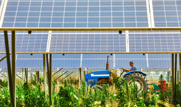 Asian farmer driving a tractor under a solar photovoltaic panel