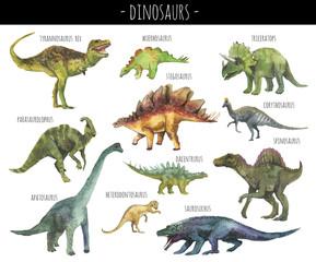 Watercolor set of hand drawn realistic dinosaurus. Realistic dino rex, spinosaurus,corhythosaurus,triceratops,stegosaurus,apatosaurus,saurosuchus,parasaurolophus etc