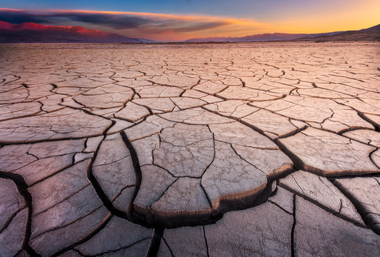 Cracked Mud Flats Bathed in Dawn Light