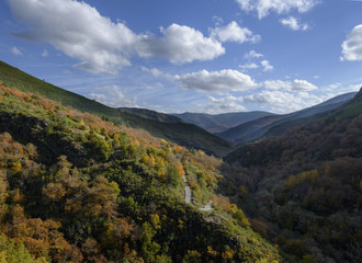 Secondary road through wooded valleys and mountains