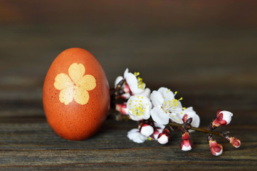 Easter egg and spring flowering branch on wooden background