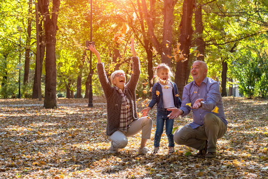 Grandparents and grandchild throwing leaves in park and having fun together