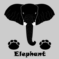 Elephant - elephant icon - traces of an elephant - trail icon - trunk - Vector