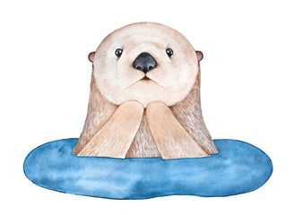Cute surprised Sea Otter, emerging from water. Symbol of faithfulness, awakening, imagination, wild life. Hand drawn watercolour sketchy drawing on white background, cut out clip art design element.