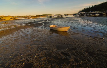 Dinghy on Mud Flats at Low Tide
