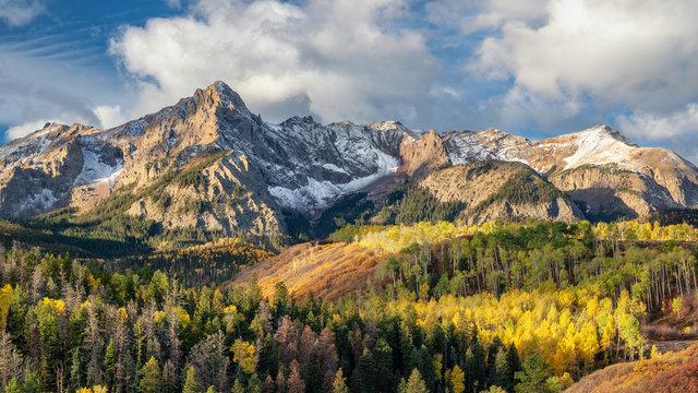 Early Morning Autumn Aspen along Ridgway Colorado County Road 9