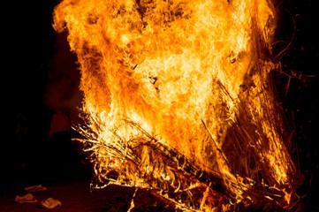 Fierce blaze of wooden bonfire on hindu festival of holi lohri
